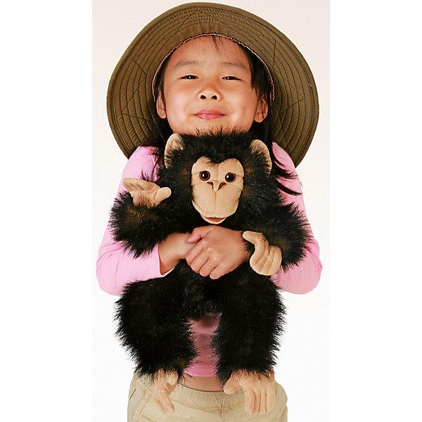 Купить Мягкая игрушка Folkmanis «Детеныш шимпанзе», 40 см, Китай, разноцветный, Унисекс