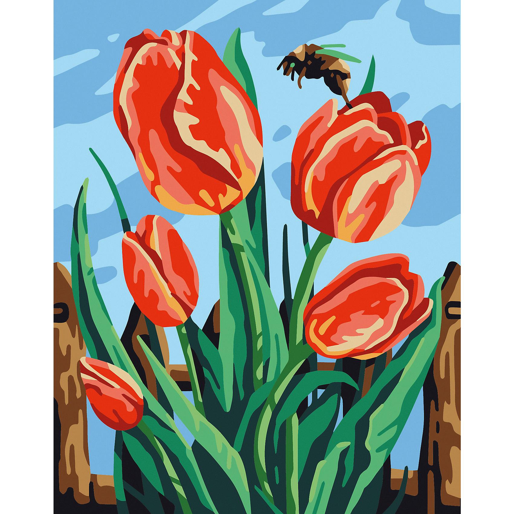 Картинки с изображением тюльпанов