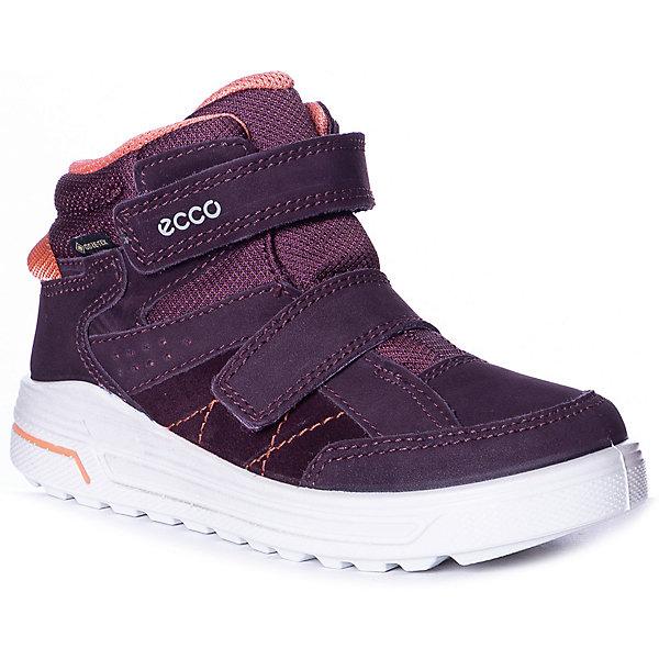 Купить Утеплённые ботинки ECCO, Индонезия, лиловый, 35, 29, 33, 34, 32, 28, 30, 31, Женский