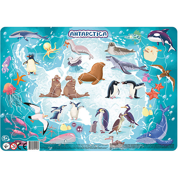 Dodo Пазл в рамке Dodo Антарктида, 53 элемента пазл 2 3 4 элемента dodo домашние животные