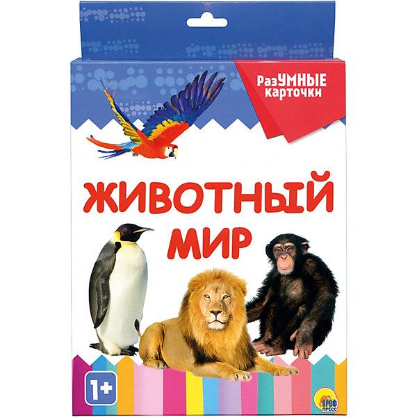 Проф-Пресс Карточки «Разумные карточки. Животный мир» стоимость