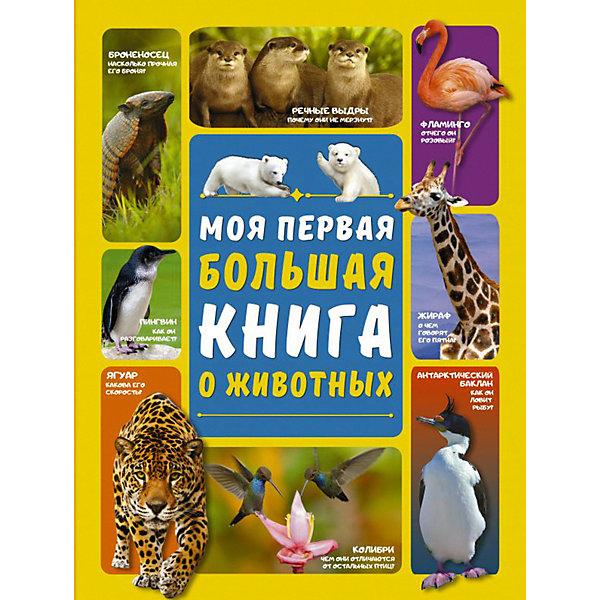 Картинка для Моя первая большая книга о животных