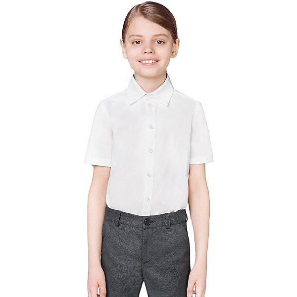 Купить Рубашка Choupette, Россия, белый, 128, 122, 158, 134, 140, 164, 152, 170, 146, Мужской