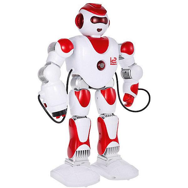 Zhorya Интерактивный робот Alpha-Z,