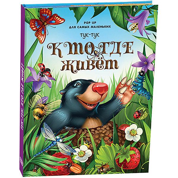 Malamalama Книжка-паномарка для самых маленьких Pop up Тук-тук. Кто где живет pop up для малышей тук тук кто где живет
