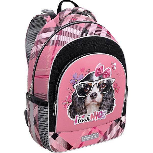 Erich Krause Ученический рюкзак Erich Krause ErgoLine 15L Clever Dog цена