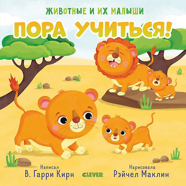 Clever Книга Животные и их малыши. Пора учиться!, Гарри Кирн В. животные и их малыши пора купаться