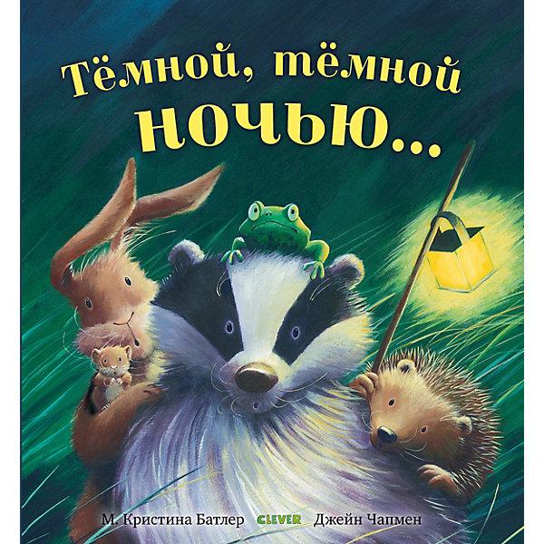 Clever Книжка-картинки Тёмной, тёмной ночью, Батлер К.