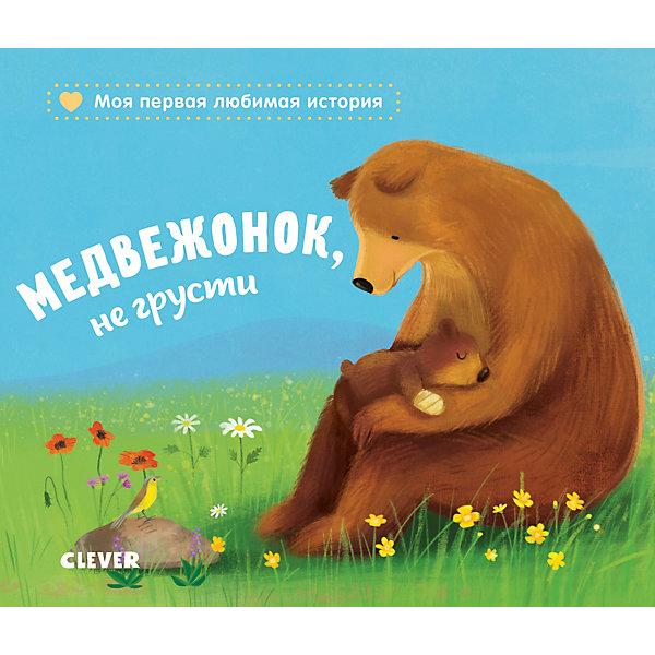 Фото - Clever Книжка-картонка Медвежонок, не грусти, Райдер К. издательство clever книжки картонки я учусь говорить транспорт симон к clever