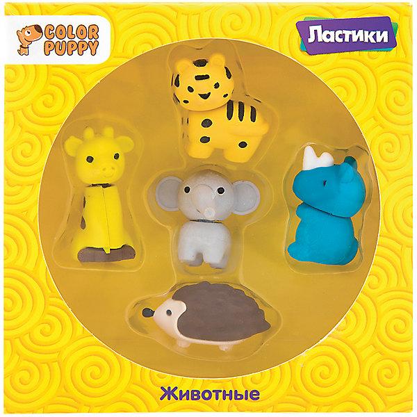 Color Puppy Комплект ластиков Животные, 5 шт