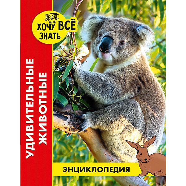Проф-Пресс Энциклопедия Хочу все знать Удивительные животные