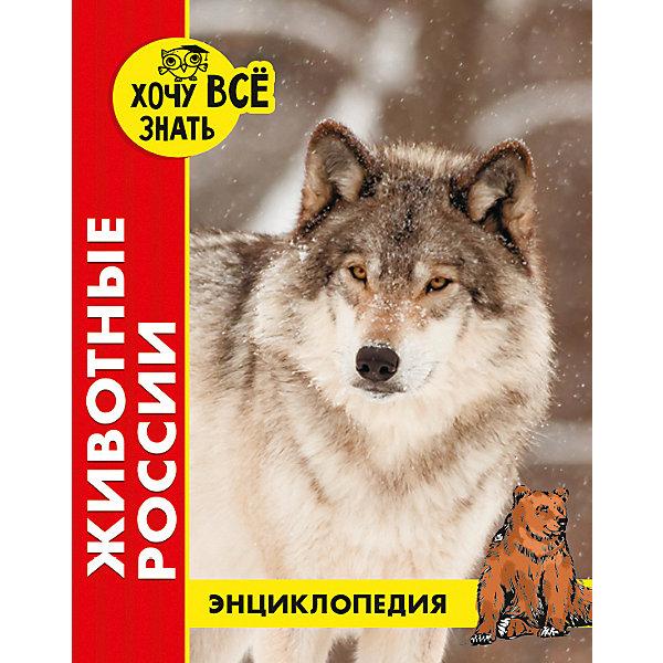 Проф-Пресс Энциклопедия Хочу все знать Животные России
