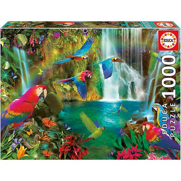 Educa Пазл Тропические попугаи, 1000 элементов
