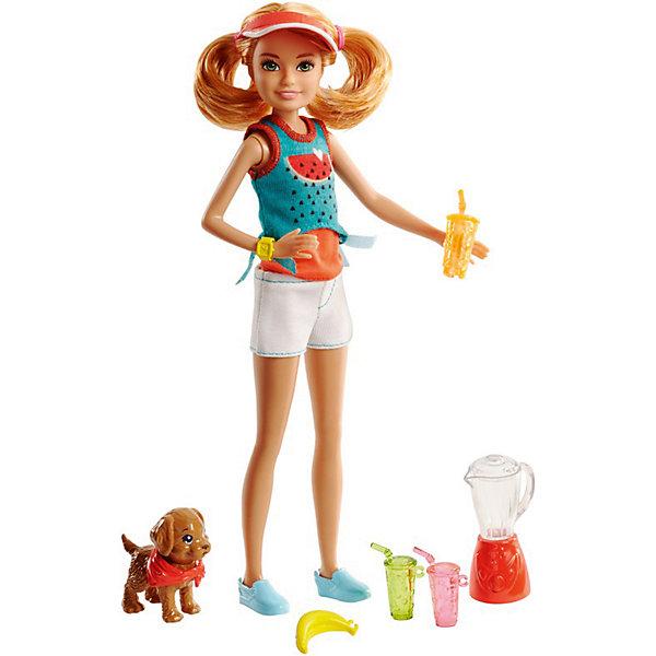 Mattel Игровой набор Barbie Сёстры и щенки Стейси, 23 см