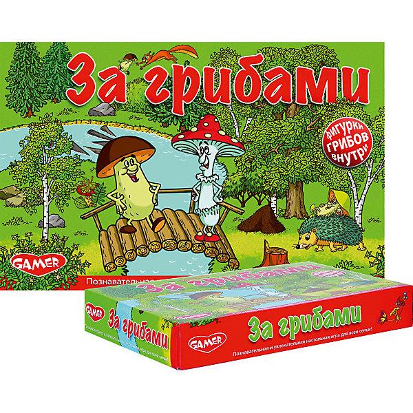 Dream Makers Детская настольная игра За грибами