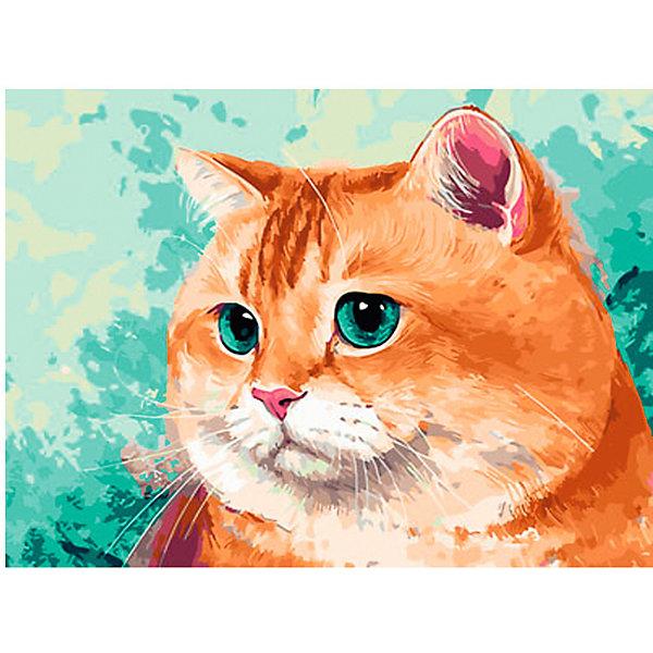 Купить Набор для раскрашивания по номерам Цветной Упитанный кот , ТМ Цветной, Китай, Унисекс
