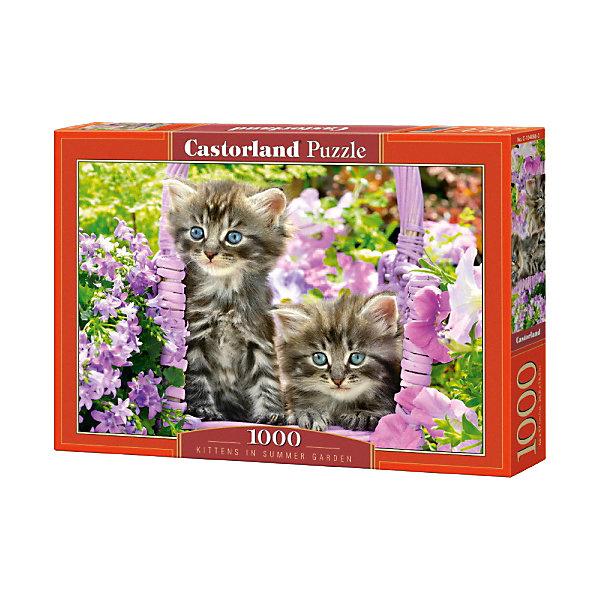Купить Пазл Castorland Котята в саду , 1000 деталей, Польша, Унисекс