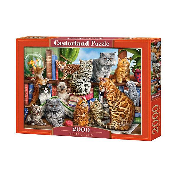 Пазл Castorland Кошки, 2000 деталей 13137989