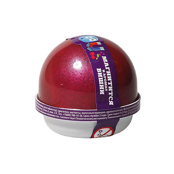 Nano Gum Жвачка для рук Дикая вишня, магнитная, 25 г
