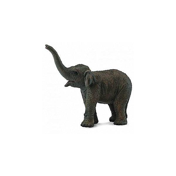 Collecta Коллекционная фигурка Азиатский слонёнок, S
