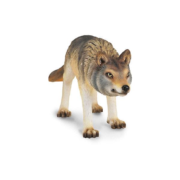 Collecta Коллекционная фигурка Волк охотящийся, M