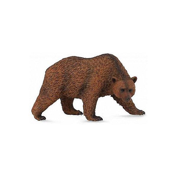 Collecta Коллекционная фигурка Медведь бурый