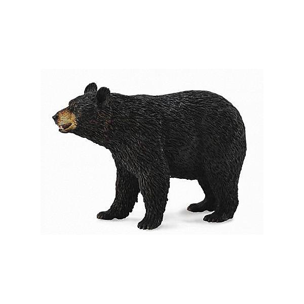 Collecta Коллекционная фигурка Американский чёрный медведь