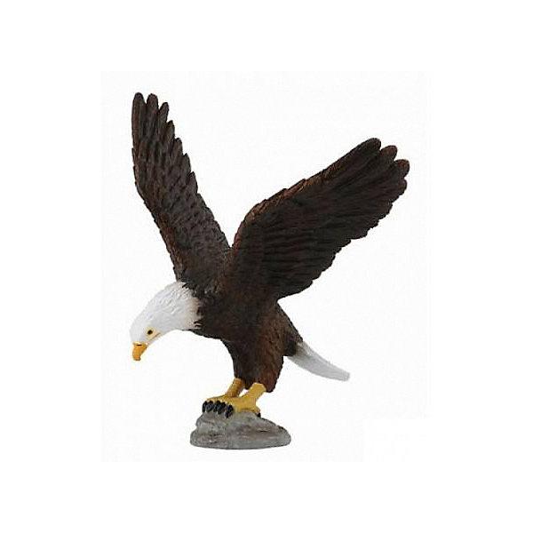 Купить Коллекционная фигурка Collecta Американский лысый орел M, Китай, Женский