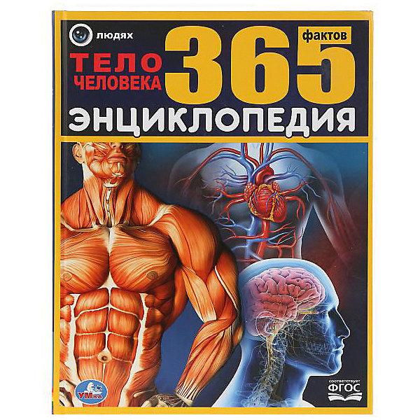 Умка Энциклопедия 365 фактов Тело человека