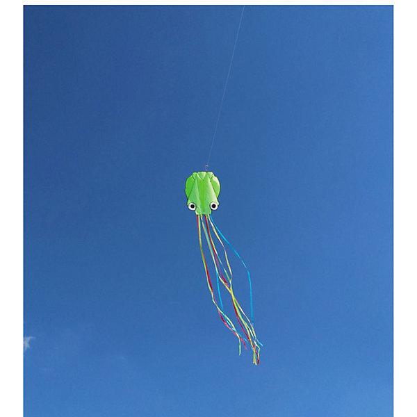 Воздушный змей Bradex