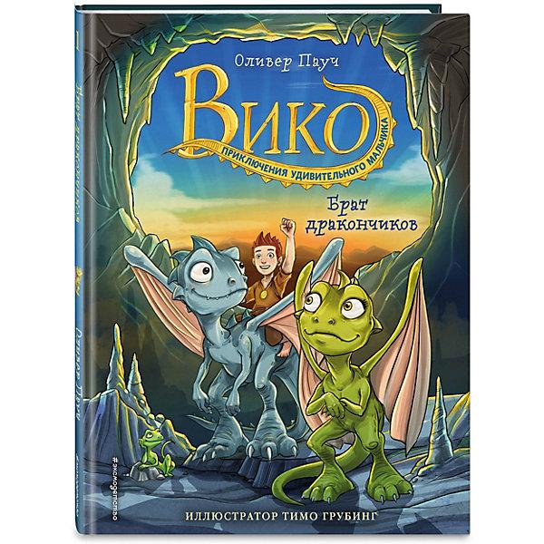 Вико. Приключения удивительного мальчика. Брат дракончиков, Пауч О. Эксмо 14862082