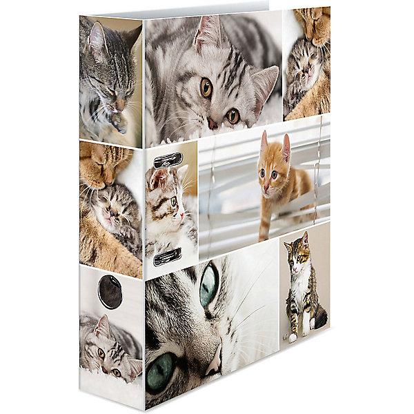 Herma Папка картон a4 - кошки