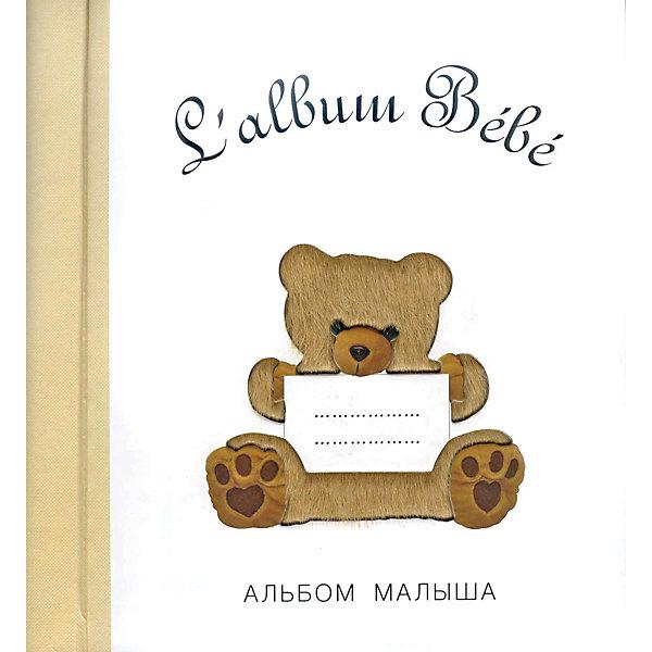 Фото - Стрекоза Альбом малыша от 0 до 1, бежевый медведь считаем до 20 маша и медведь учимся с машей 5 6 лет