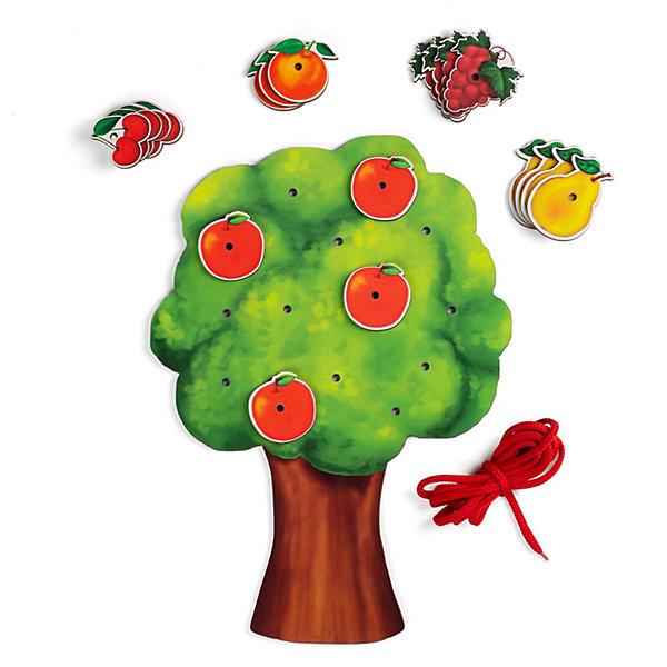 Купить Шнуровка Paremo Фруктовое дерево, разноцветный, Унисекс
