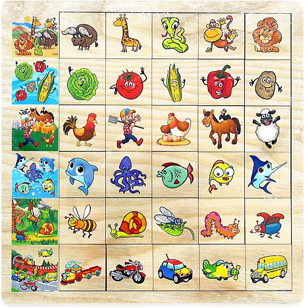 PAREMO Обучающая игра Paremo Ассоциации, 30 элементов paremo обучающая игра paremo ассоциации 30 элементов