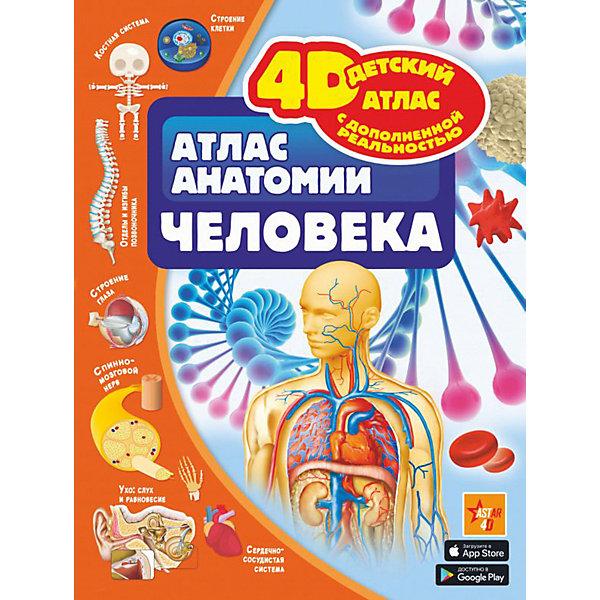 4D-атлас анатомии человека, с дополненной реальностью, Издательство АСТ, Россия, Унисекс  - купить со скидкой
