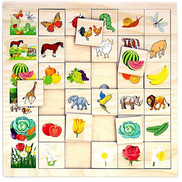 PAREMO Игровой набор Paremo Ассоциации Окружающий мир, 30 элементов paremo обучающая игра paremo ассоциации 30 элементов