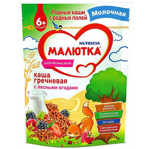 Купить Каша Малютка молочная гречневая с лесными ягодами, с 6 мес, Россия, Унисекс