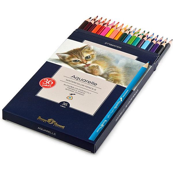 Bruno Visconti Акварельные цветные карандаши Aquarelle, 36 цветов