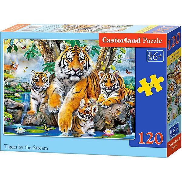 Купить Пазл Castorland Семья тигров у ручья, 120 деталей, Польша, Унисекс