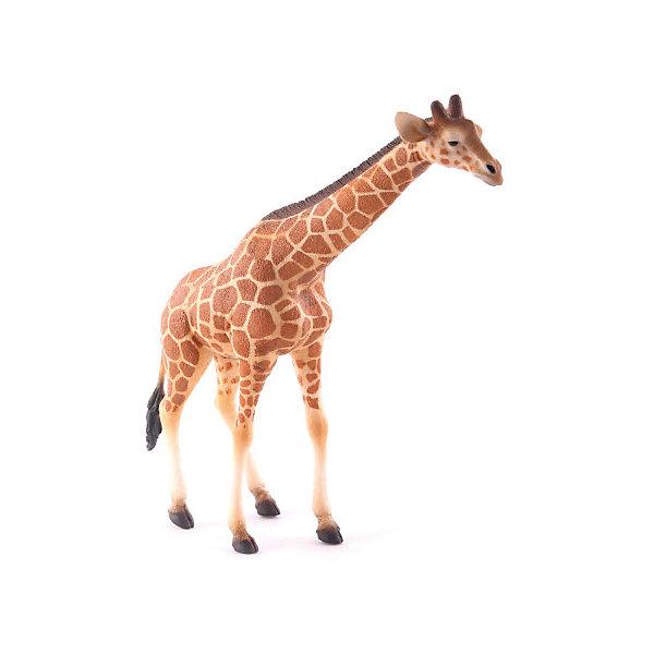 Купить Фигурка Collecta Сетчатый жираф , XL, Китай, Унисекс