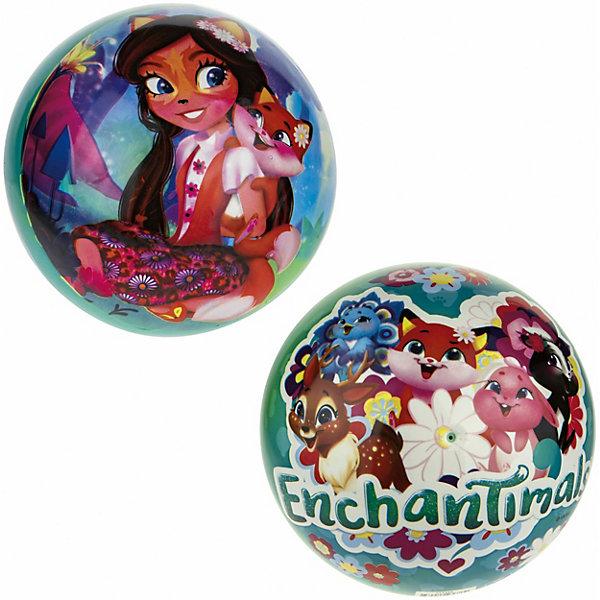 Мяч 1Toy Enchantimals, диаметр 23 см разноцветного цвета