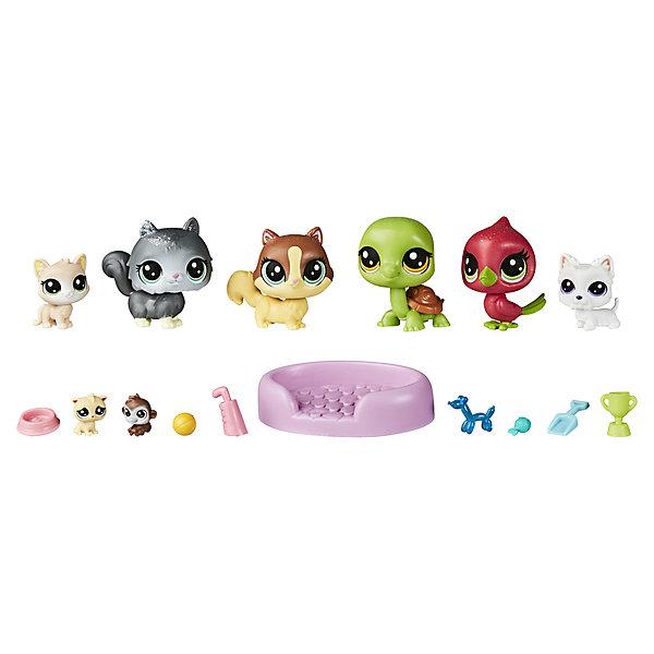 Hasbro Игровой набор Littlest Pet Shop Большой магазин петов