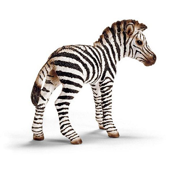 Schleich Детеныш зебры. Серия Дикие животныеМир животных<br>Schleich (Шляйх), детеныш зебры. Серия Дикие животные. <br><br>Характеристика:<br><br>• Материал: резина, пластик.  <br>• Размер фигурки: 7,1х2,9х6,2 см. <br>• Фигурка прекрасно детализирована.<br>• Реалистично раскрашена вручную. <br><br>Очаровательный детеныш зебры очень похож на настоящую живую лошадь, отлично детализирован и реалистично раскрашен. Игрушки серии Дикие животные от немецкого бренда Schleich изготовлены из высококачественных экологичных материалов, с применением только безопасных, нетоксичных красителей. Собери всю коллекцию Schleich и познакомься поближе с такими удивительными дикими и домашними животными! <br><br>Schleich (Шляйх), детеныша зебры, серия Дикие животные, можно купить в нашем интернет-магазине.<br>Ширина мм: 102; Глубина мм: 86; Высота мм: 22; Вес г: 26; Возраст от месяцев: 36; Возраст до месяцев: 96; Пол: Унисекс; Возраст: Детский; SKU: 1821339;