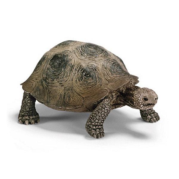 Schleich Schleich Гигантская черепаха. Серия Дикие животные roxy брюки roxy backyard pt j snpt wbb0 сноубордические женские bright white m