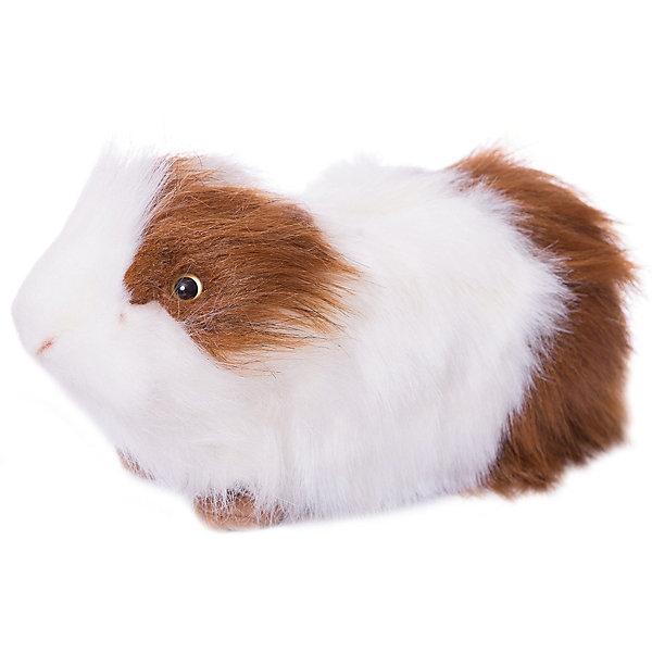 Купить hansa Морская свинка бело-рыжая, 30 см (2541748) в Москве, в Спб и в России