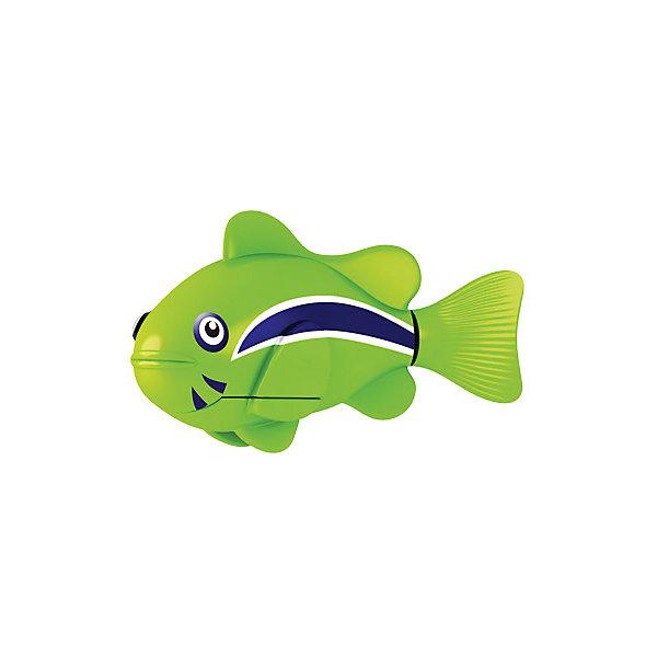ZURU РобоРыбка Клоун зеленая, RoboFish игрушка zuru robofish клоун с аквариумом yellow 2502