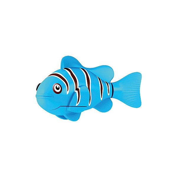 РобоРыбка Клоун голубая, RoboFishРоборыбки<br>Голубая Рыбка клоун при погружении в аквариум или другою емкостью с водой РобоРыбка начинает плавать – опускаясь ко дну и поднимаясь к поверхности воды. Игрушка работает от двух алкалиновых батареек А76 или RL44, которые входят в комплект (две установлены в игрушку и 2 запасные)<br>Ширина мм: 435; Глубина мм: 405; Высота мм: 240; Вес г: 216; Возраст от месяцев: 60; Возраст до месяцев: 144; Пол: Унисекс; Возраст: Детский; SKU: 2999505;