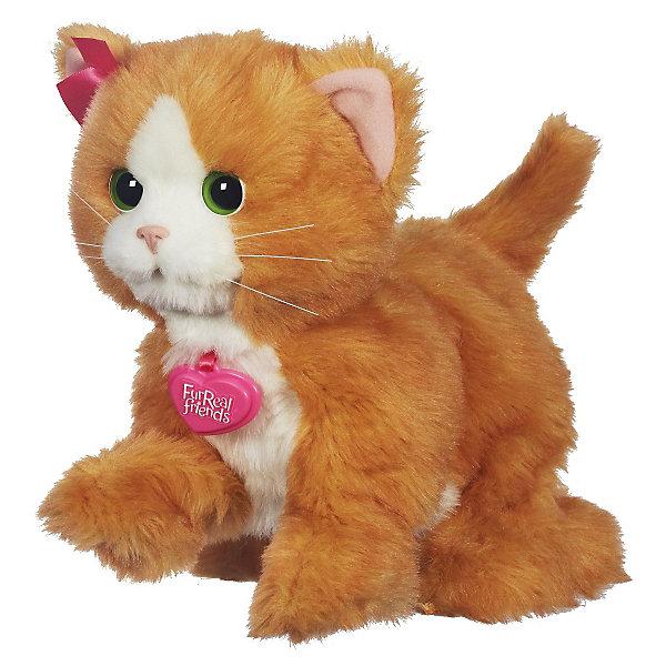 Hasbro Игривый котенок Дэйзи, FurReal