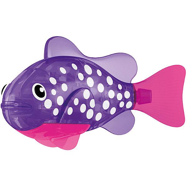 РобоРыбка светодиодная Биоптик, RoboFishРоборыбки<br>РобоРыбка светодиодная Биоптик, RoboFish (РобоФиш) - это инновационная рыбка, которая при соприкосновении с водой начинает не только плавать как живая, но и светиться.  <br><br>Симпатичная РобоРыбка с весёлым фиолетовым окрасом и белыми кружками по бокам, как и другие рыбки светящейся серии, оснащается специальным маленьким светодиодом внутри, который красиво светится в темноте. Интересней всего это смотрится тогда, когда в аквариуме будут находиться ещё и другие модели светящихся рыбок. Мягкий силиконовый хвост и электромагнитный мотор помогают рыбкам двигаться в 5 различных направлениях. Игрушка плавает в воде в течение 4-4,5 минут, после чего ее можно вынуть из воды, и снова опустить в воду, чтобы рыбка заработала снова.<br><br>Комплектация: РобоРыбка, 4 батарейки, подставка<br><br>Дополнительная информация:<br><br>-Длина игрушки: около 7 см, высота: 3,5 см   <br>-Работает от 2х батареек типа А76 или RL44 (есть в комплекте 4 шт.)<br>-Материалы: силикон, пластмасса<br><br>Роборыбка понравится как детям, так и взрослым. Поместите одну или несколько таких рыбок в аквариум - такое красивое зрелище станет оригинальным подарком друзьям или украшением дома.<br><br>РобоРыбку светодиодную Биоптик, RoboFish (РобоФиш) можно купить в нашем магазине.<br>Ширина мм: 60; Глубина мм: 200; Высота мм: 50; Вес г: 90; Возраст от месяцев: 60; Возраст до месяцев: 144; Пол: Унисекс; Возраст: Детский; SKU: 3544549;